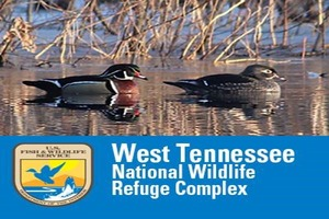 West Tennessee National Wildlife Refuge